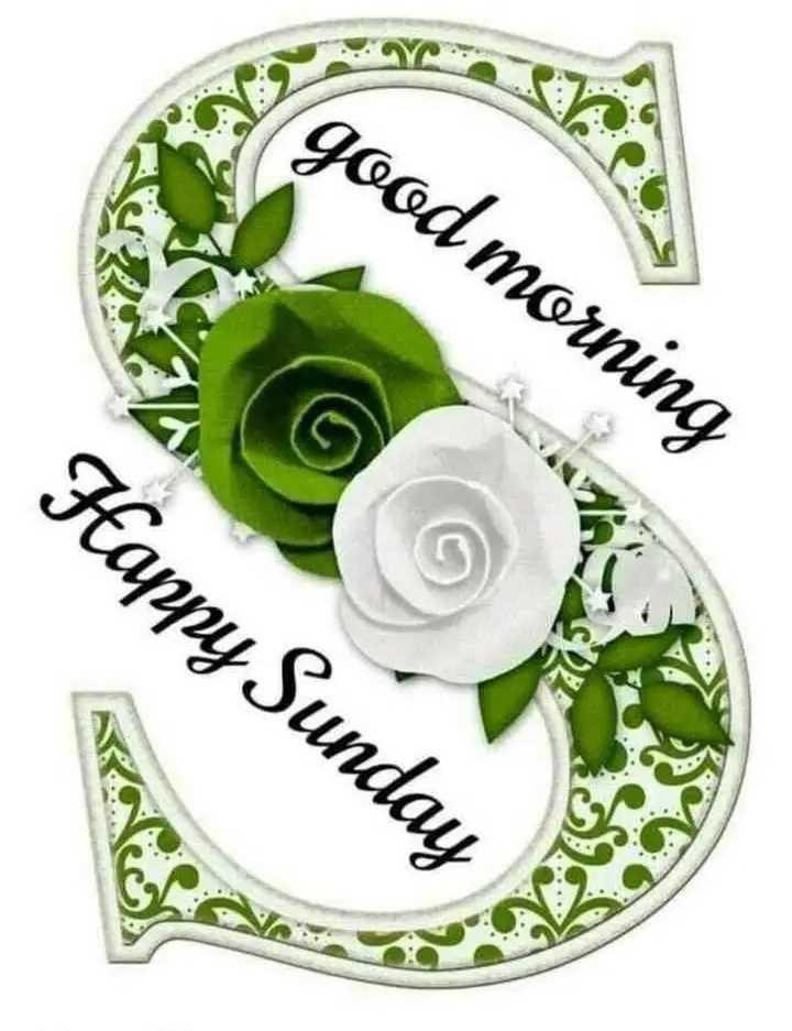 good morning💐 - good morning Happy Sunday - ShareChat