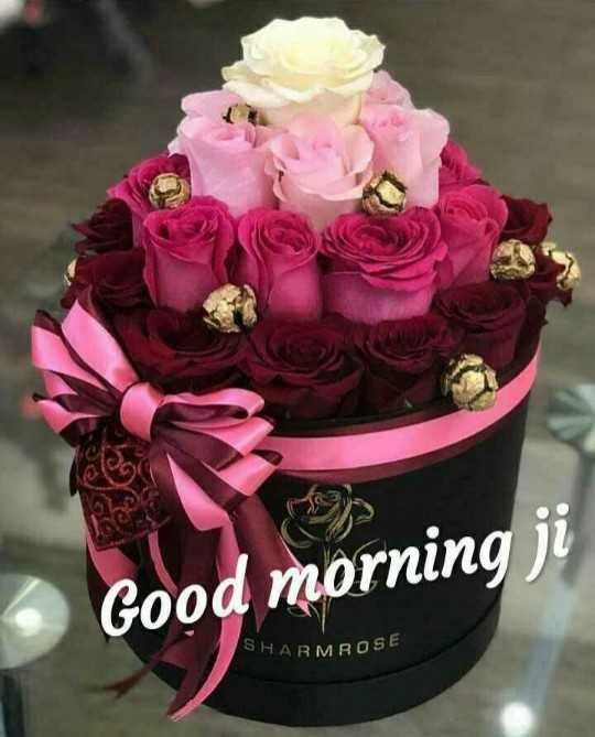 😄good morning 😄 - Good morning ji SHARMROSE - ShareChat