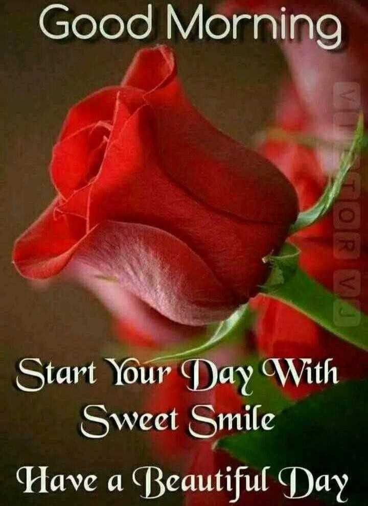 good morning 🙂 - Good Morning 0 RV Start Your Day With Sweet Smile Have a Beautiful Day - ShareChat