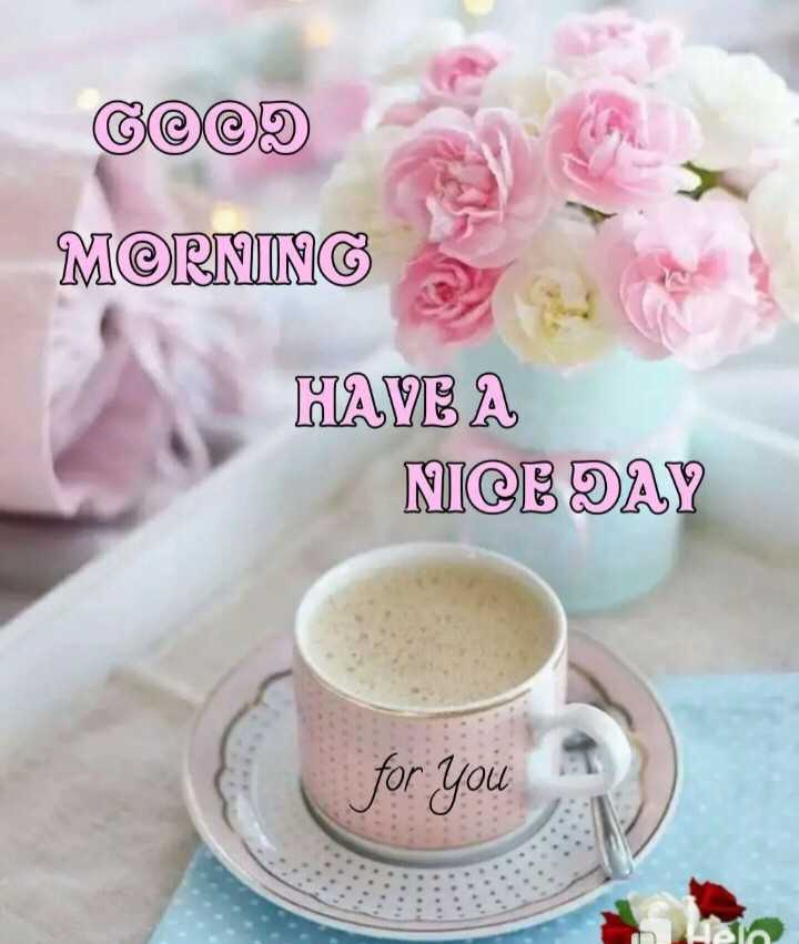 good morning - GOOD MORNING HAVE A NICE DAY for you - ShareChat