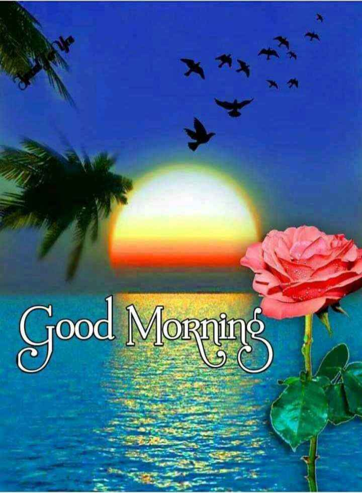 🍁🍃🌺good morning🌺🍃🍁 - Good Morning - ShareChat