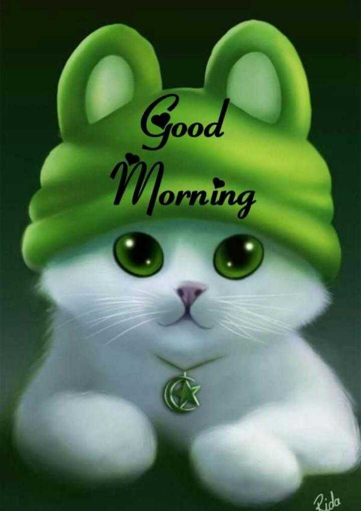 good morning - Rida - ShareChat