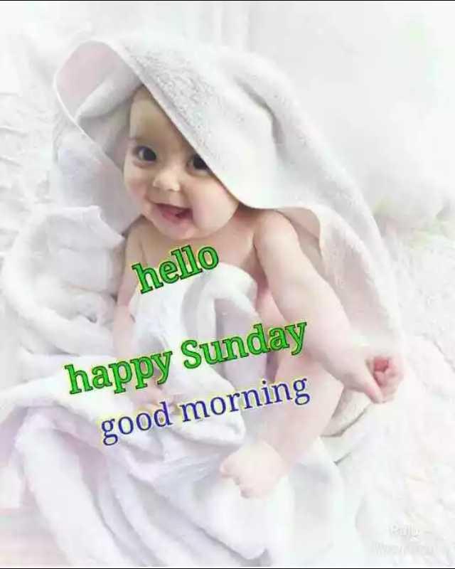 good morning  - hello happy Sunday good morning - ShareChat