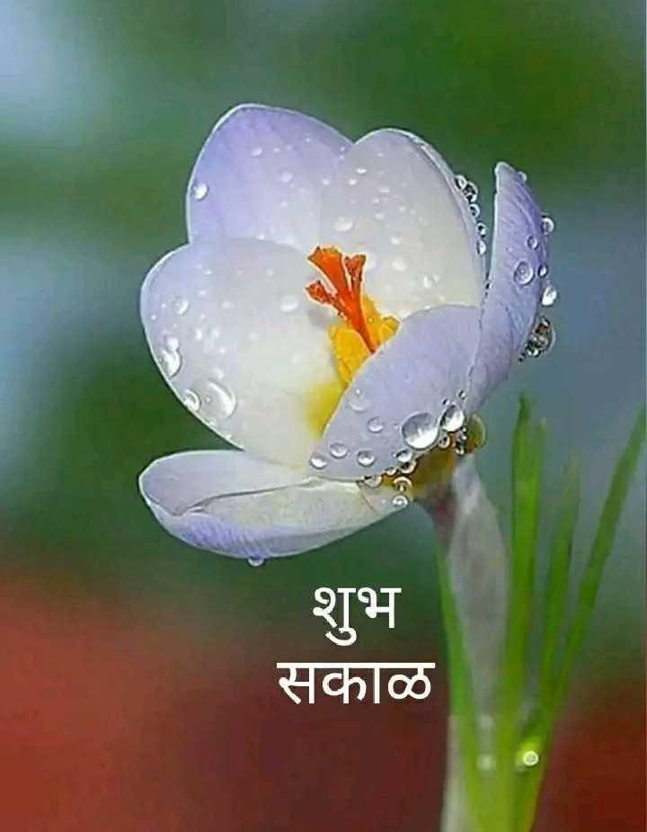 🌹☕good morning 😄 - शुभ सकाळ - ShareChat