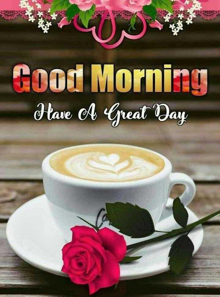 🌞good morning🌞 - Good Morning Have A Great Way - ShareChat