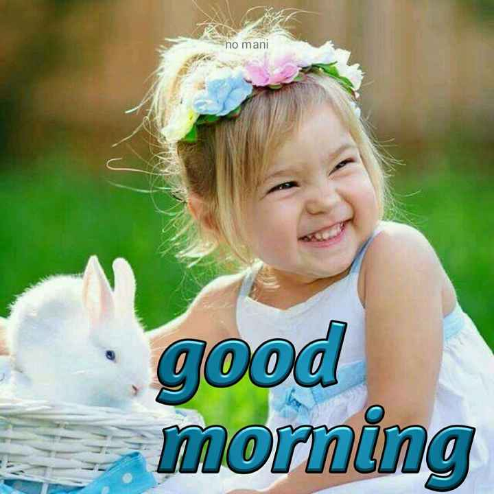 💙 good morning 💙 - no mani good morning - ShareChat