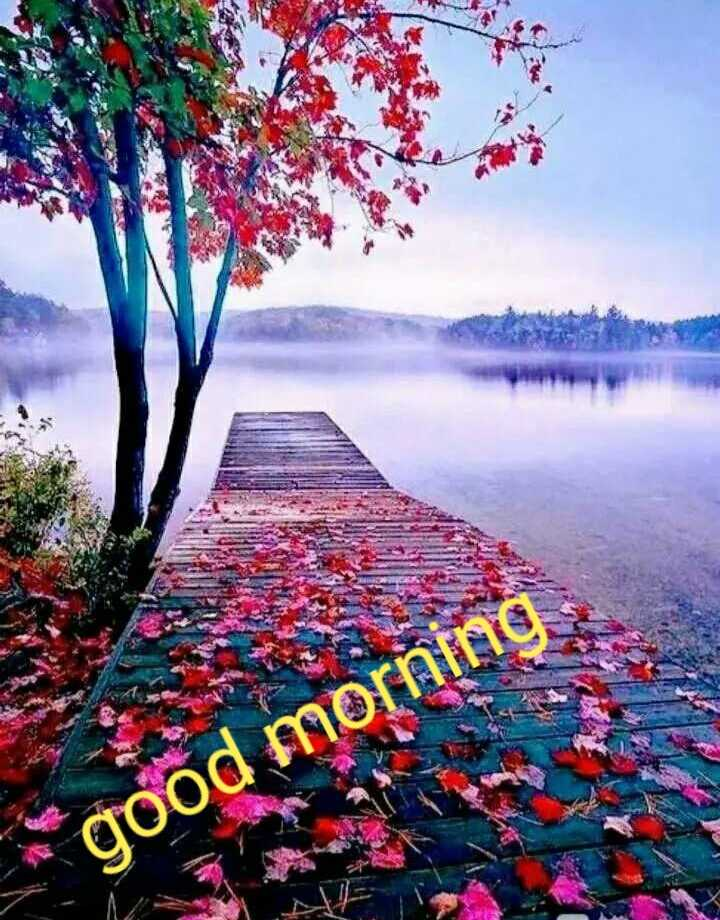 good morning - good - ShareChat