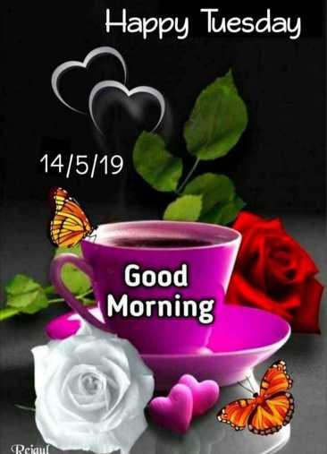 goodmorning - Happy Tuesday 14 / 5 / 19 Good Morning Reiaul - ShareChat