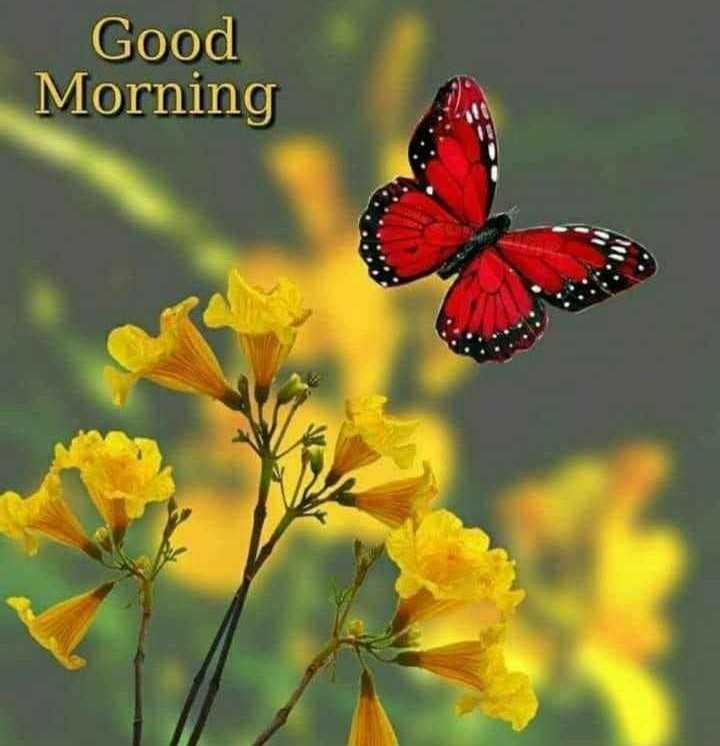 good morning 🙂 - Good Morning - ShareChat