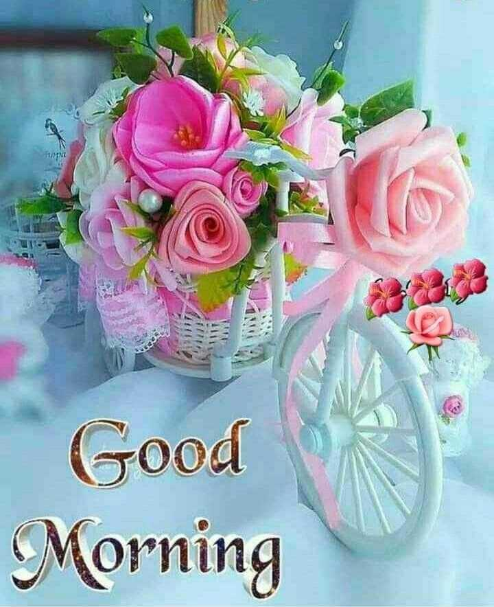 good morning 🙏🙏 - Good Morning - ShareChat