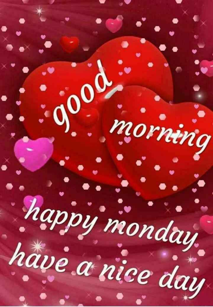 good morning💐 - gooa morning   happy monday . have a nice day - ShareChat