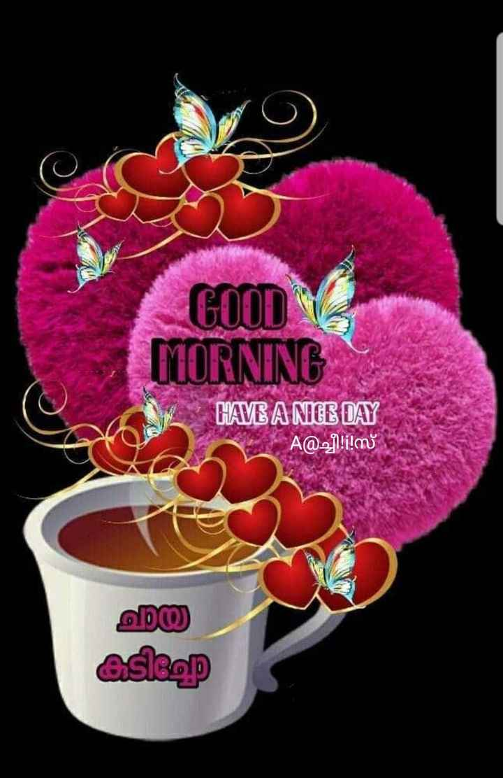 💖good morning💖 - con 3 MORNING HAVE A NICE DAY A @ j ! ! ! M യ asleep - ShareChat