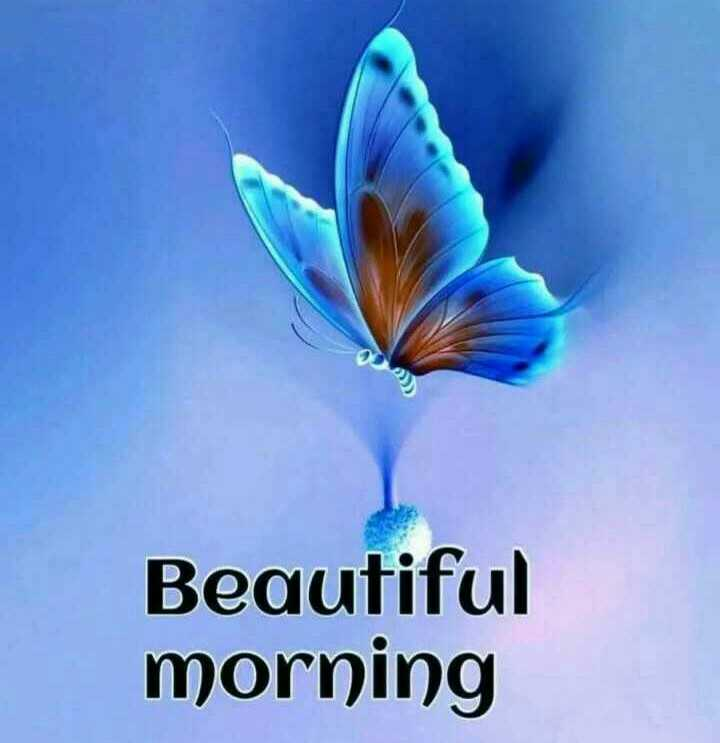 good morning - Beautiful morning - ShareChat