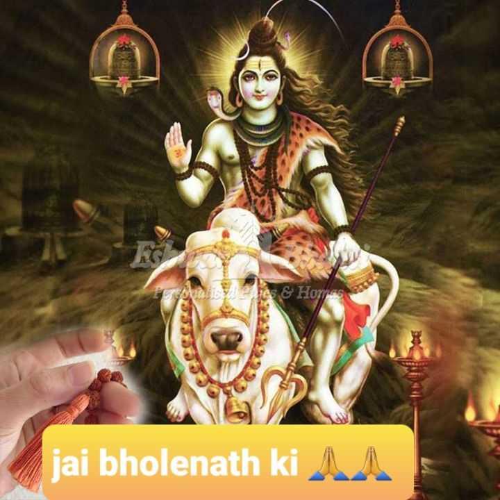 😊💐good morning 😊💝 - Ares & Homes jai bholenath ki AA - ShareChat