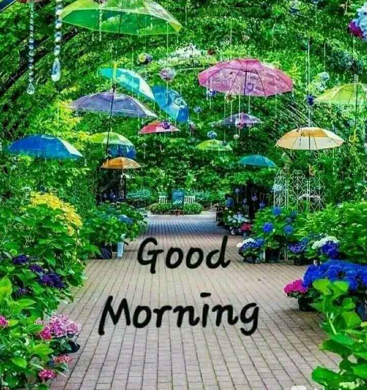 good morning ☕ - . Good com Morning - ShareChat