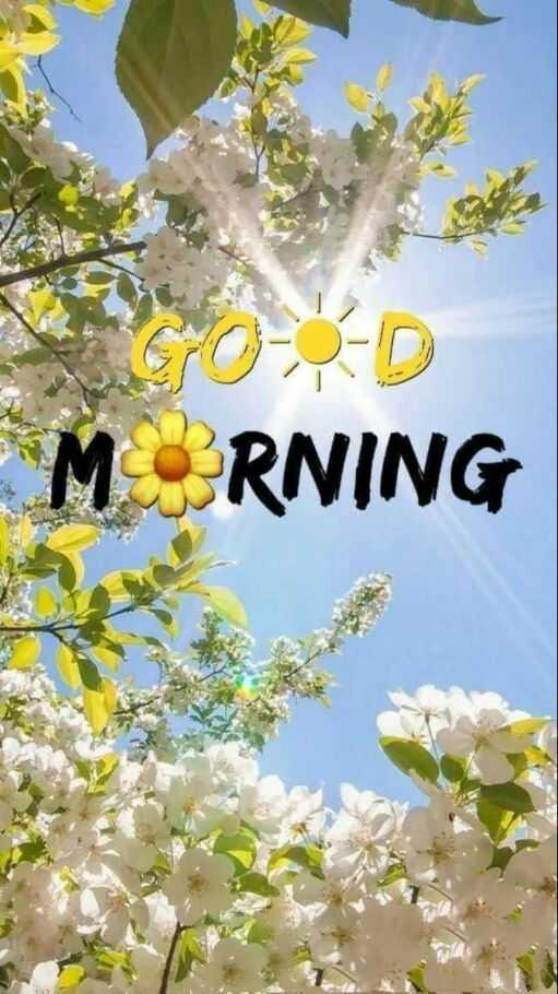 good morning ☕ - MORNING - ShareChat