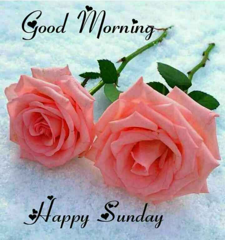 😄good morning 😄 - Good ÎMorning Happy Sunday - ShareChat
