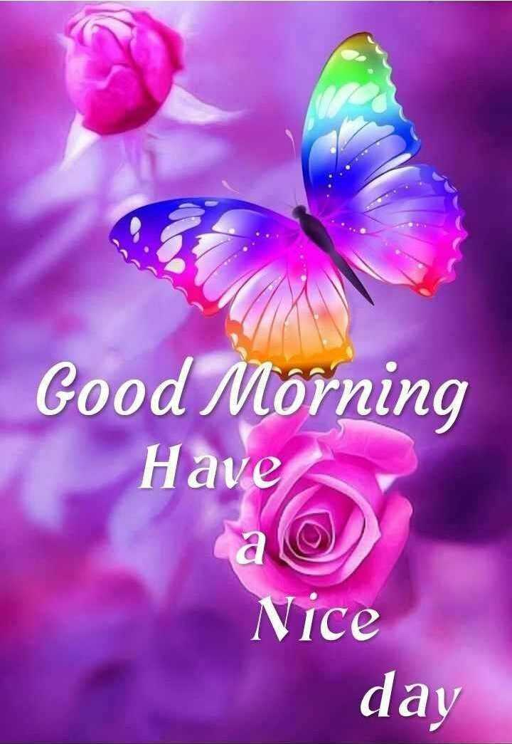 good morning ☕☕☕ - Good Morning Have Nice day - ShareChat