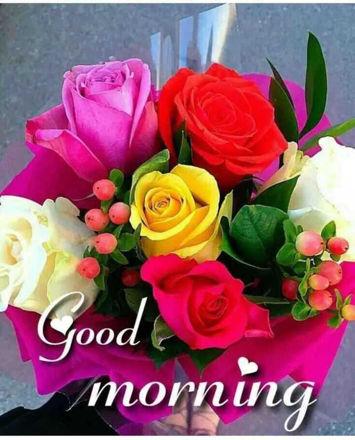 ## good morning  ## - ooar Good & morning - ShareChat