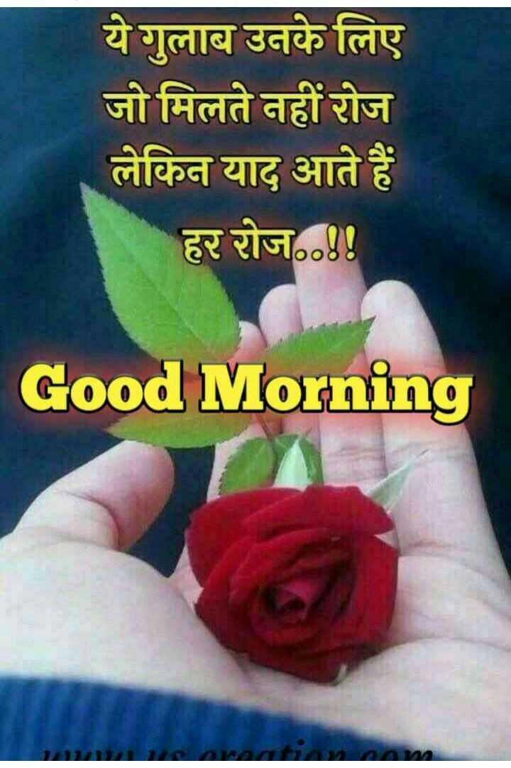 😄good morning 😄 - ये गुलाब उनके लिए जो मिलते नहीं रोज लेकिन याद आते हैं हर रोज . . ! Good Morning - ShareChat
