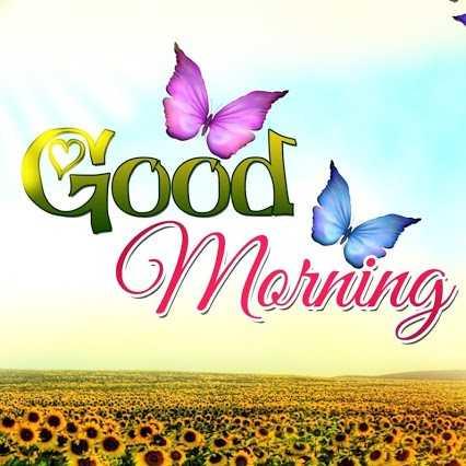 good  morning - Good Merring - ShareChat