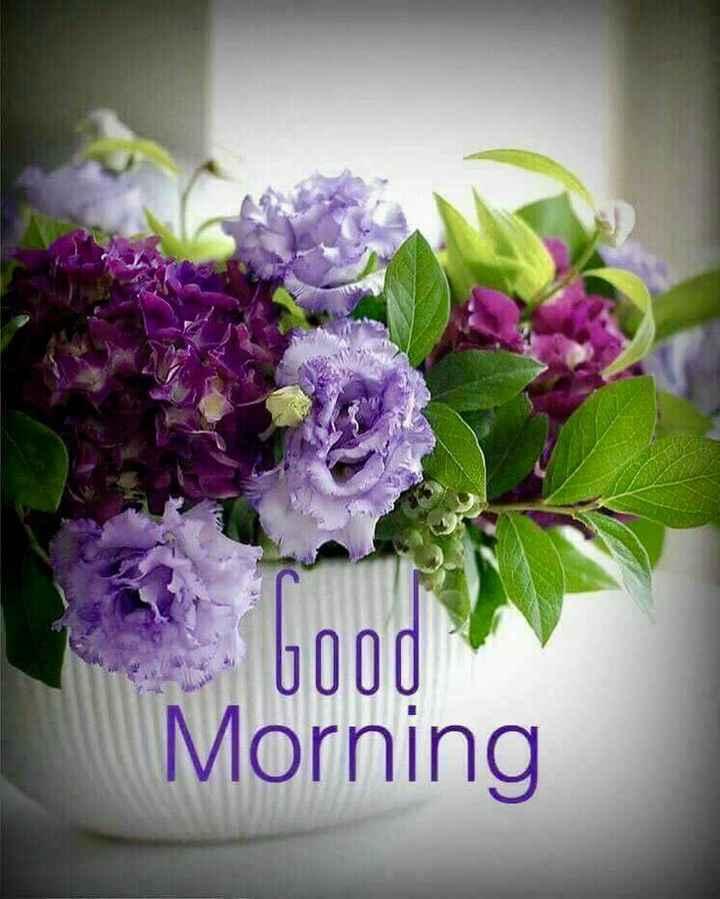 😊💐good morning 😊💝 - bood Morning - ShareChat