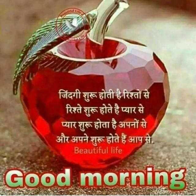 #good morning - जिंदगी शुरू होती है रिश्तों से रिश्ते शुरू होते है प्यार से प्यार शुरू होता है अपनों से । और अपने शुरू होते हैं आप से . Beautiful life Good morning . - ShareChat
