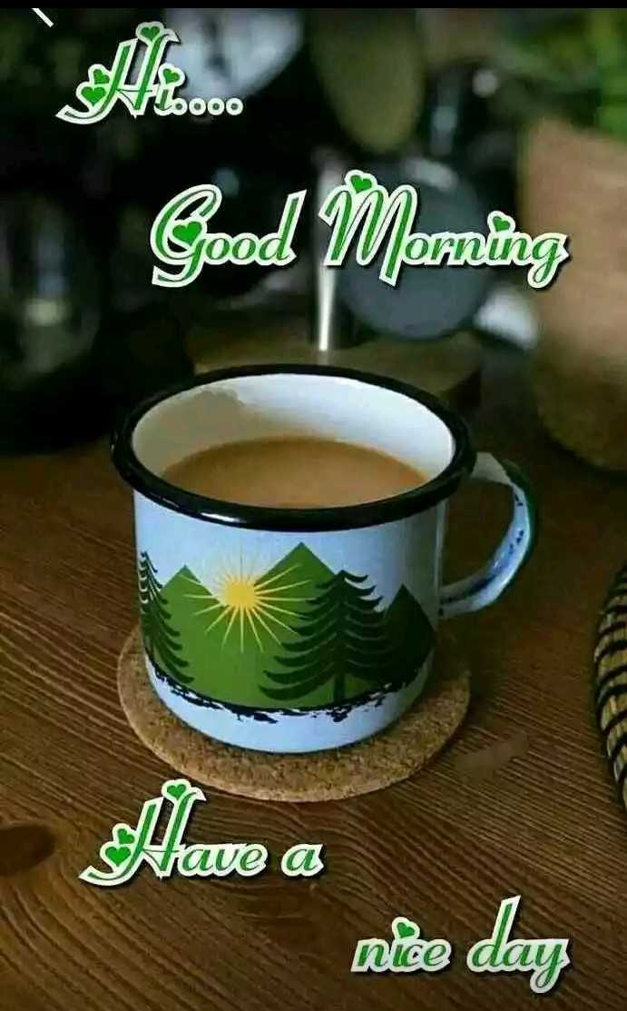 good morning ☕ - 000 Good Morning Have a ne day - ShareChat