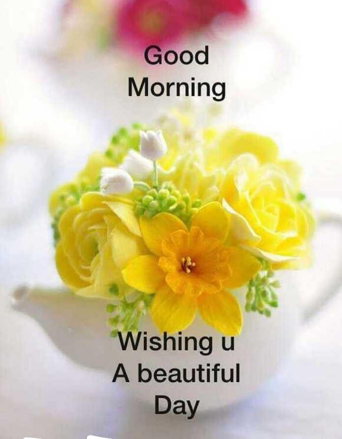 good  morning - Good Morning Wishing u A beautiful Day - ShareChat