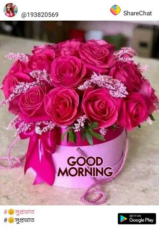 🌸💐🌸 good morning🌸💐🌸 - @ 193820569 ShareChat GOOD MORNING # auto # সুপ্রভাত GET IT ON Google Play - ShareChat