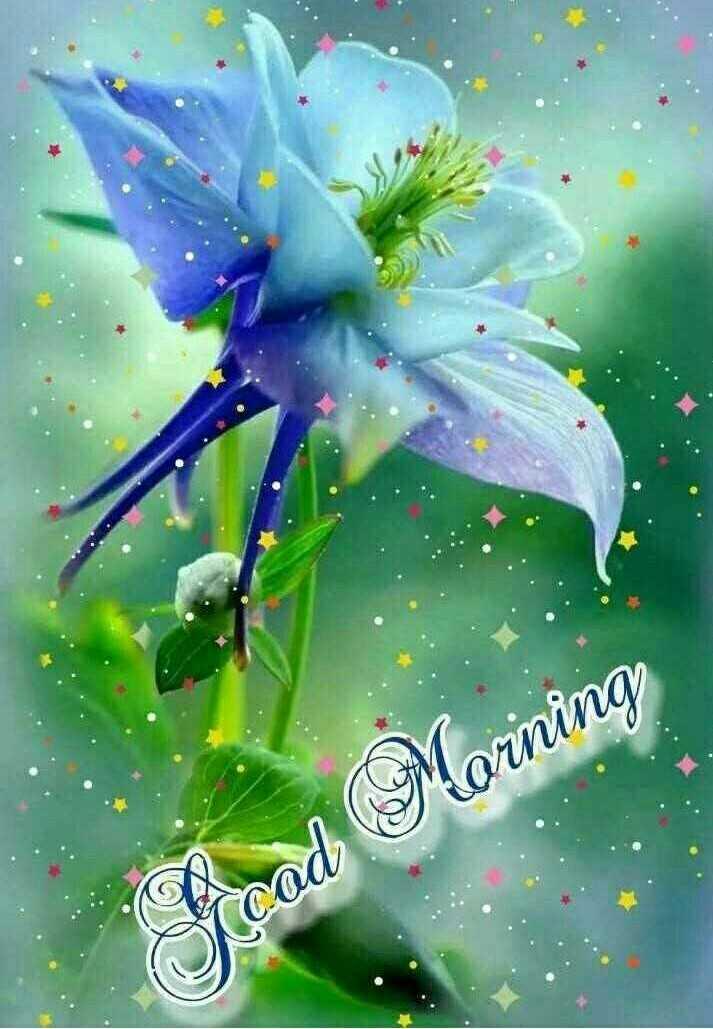 good morning ☕ - cad Morning - ShareChat