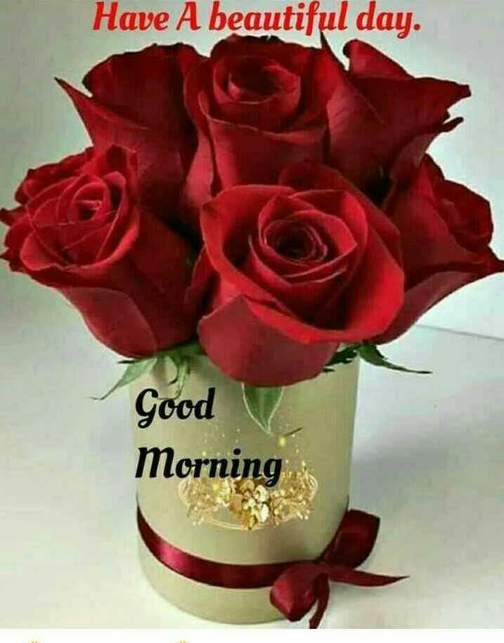 #good morning - Have A beautiful day . Good Morning - ShareChat