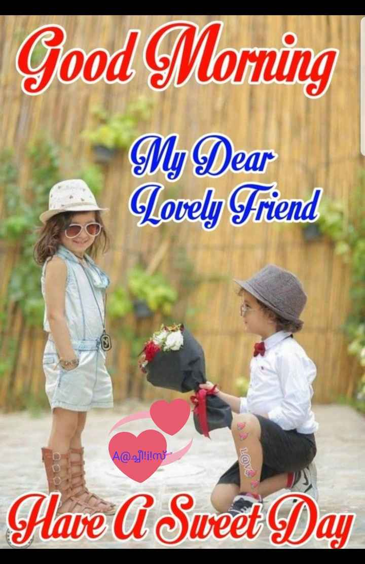 💖good morning💖 - Good Morning My Dear Lovely Friend A @ 2j1 ! ! L @ . . Have A Sweet Day - ShareChat
