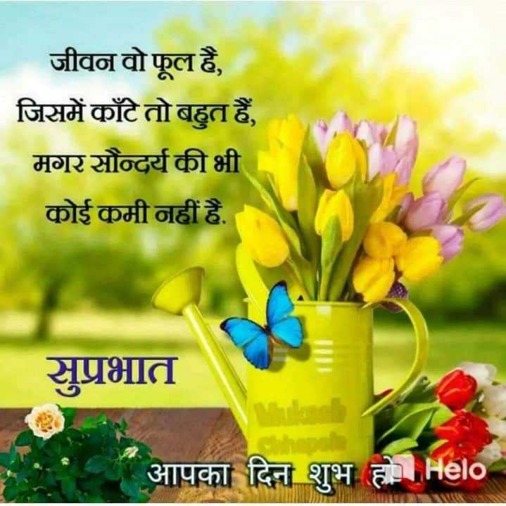 good morning - जीवन वो फूल है , जिसमें काँटे तो बहुत हैं , मगरसौन्दर्य की भी कोई कमी नहीं है . सुप्रभात आपका दिन शुभ होHelo - ShareChat
