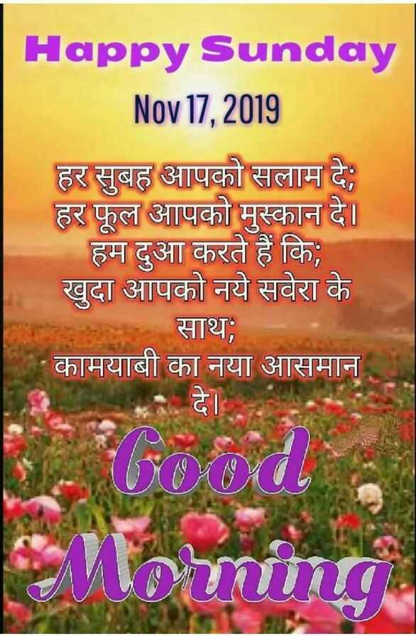 goodmorning - Happy Sunday Nov 17 , 2019 हर सुबह आपको सलाम दे ; हर फूल आपको मुस्कान दे । हम दुआ करते हैं कि ; खुदा आपको नये सवेरा के साथ ; कामयाबी का नया आसमान Luna - ShareChat