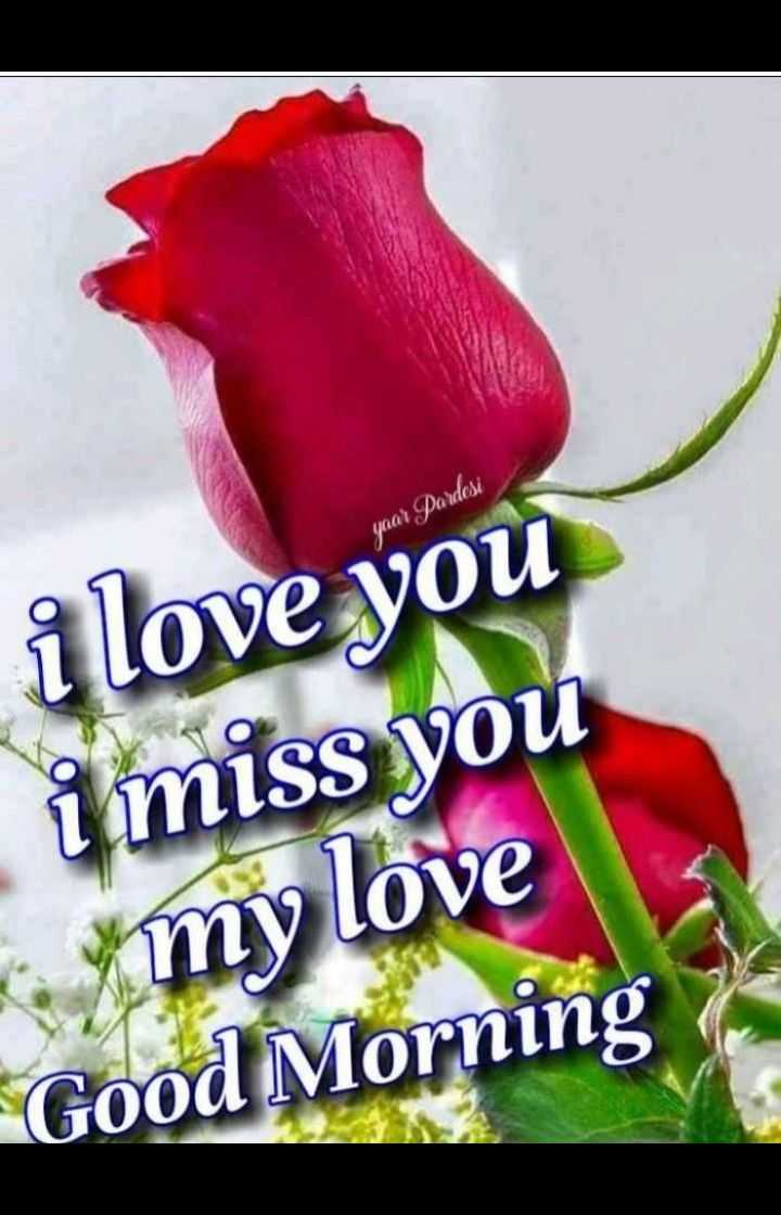 good morning💍🌹🌹💍🌹🌹💍 🌹🌹🌹🌹🌹🌹🌹 🌹🌹🌹🌹🌹🌹🌹 💍🌹🌹🌹🌹🌹💍 💍💍🌹🌹🌹💍💍 💍💍💍🌹💍💍💍 - yaar Pardesi i love you i miss you my love Good Morning - ShareChat