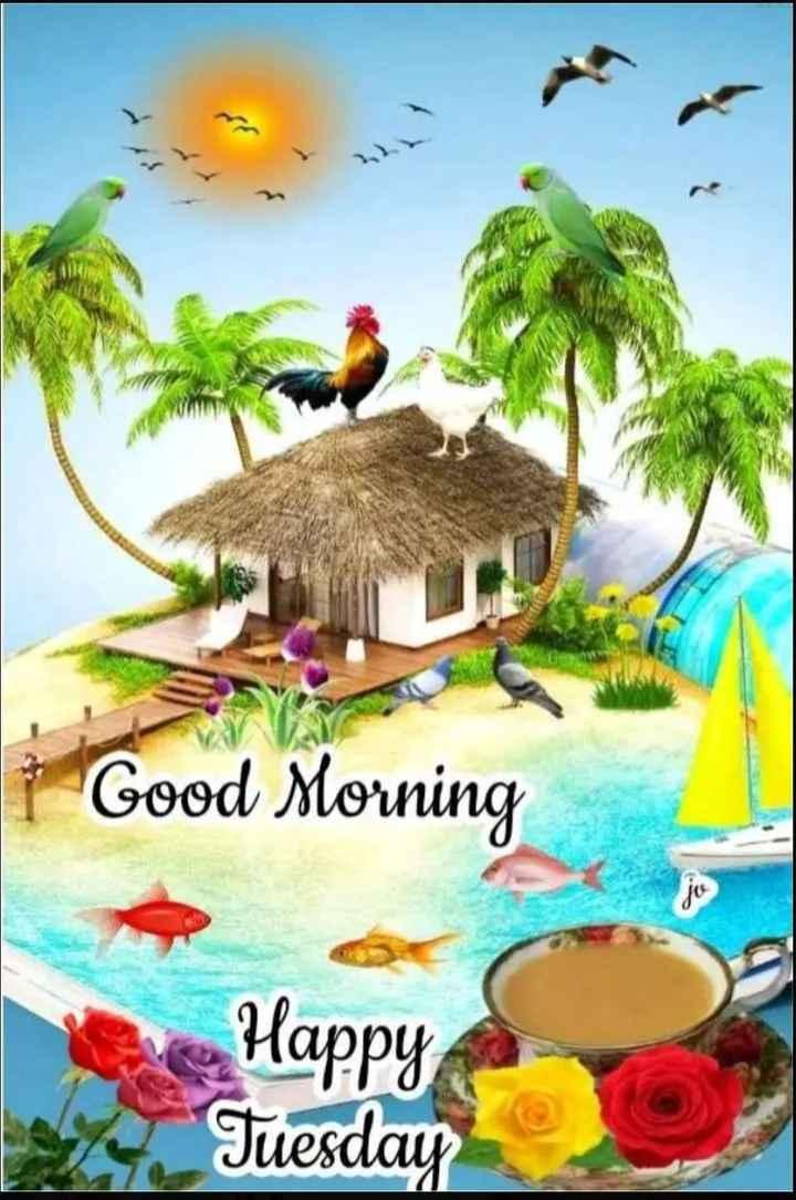 🍁🍃🌺good morning🌺🍃🍁 - Good Morning Happy Tuesday - ShareChat
