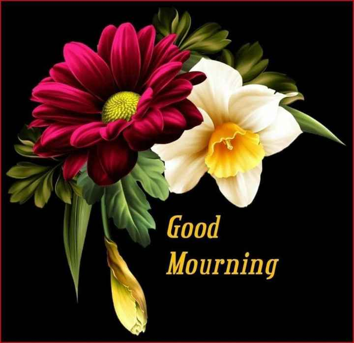 😊💐good morning 😊💝 - Good Mourning - ShareChat