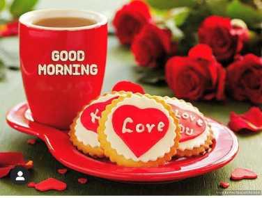 💟good morning 💟 - GOOD MORNING OV Cove - ShareChat