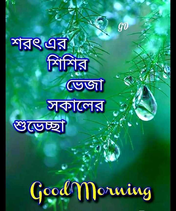 good morning - শরৎ এর শিশির । ভেজা সকালের শুভেচ্ছা Goodmorning - ShareChat