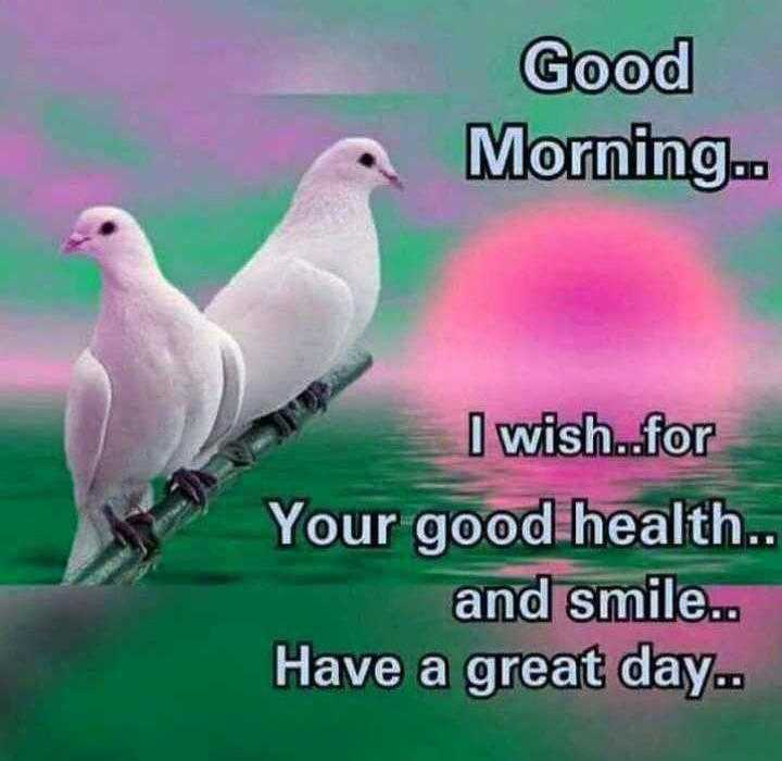 ☆☆good morning☆☆ - Good Morning . . I wish . . for Your good health . . and smile . . Have a great day . . - ShareChat