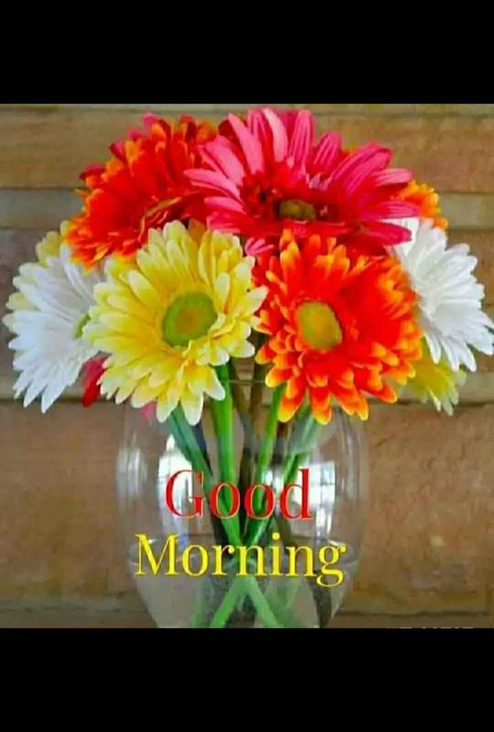 good morning💕💐 - Good Morning - ShareChat