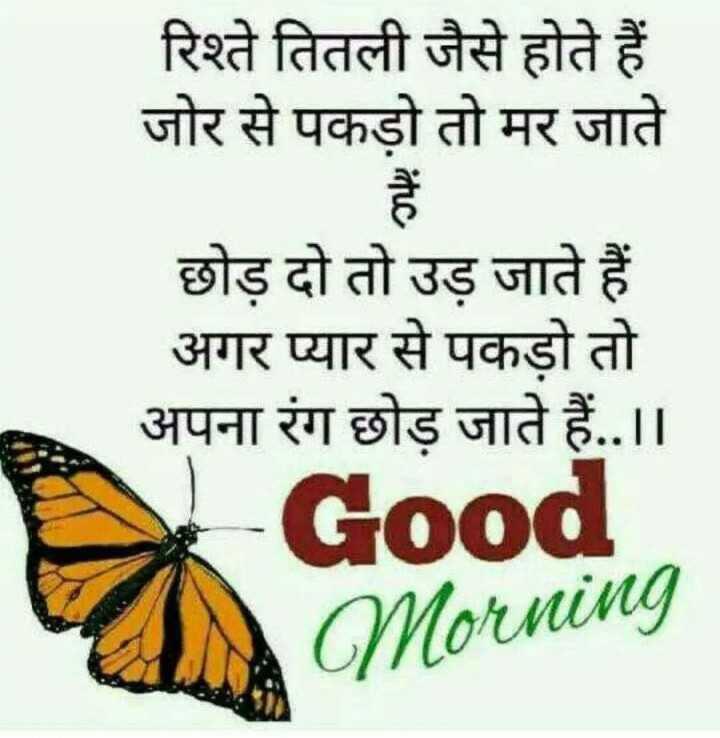 good morning - रिश्ते तितली जैसे होते हैं । जोर से पकड़ो तो मर जाते छोड़ दो तो उड़ जाते हैं । अगर प्यार से पकड़ो तो अपना रंग छोड़ जाते हैं . . । । Good Morning - ShareChat