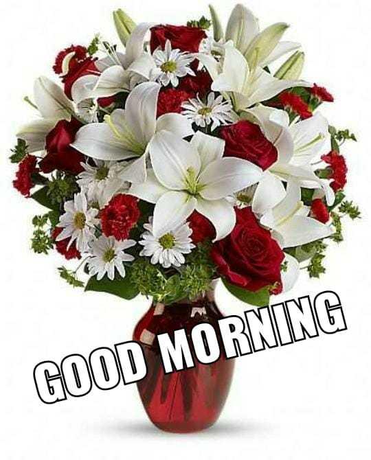 good morning 💖💞 - GOOD MORNING - ShareChat