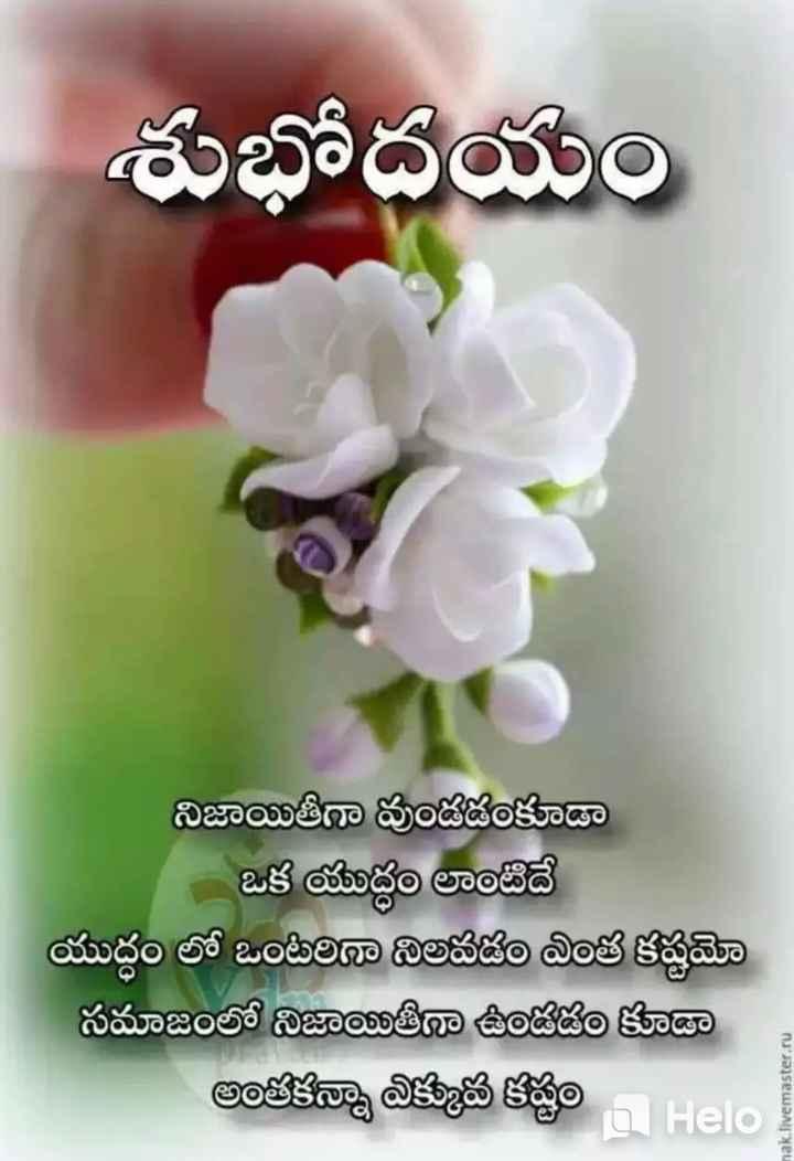 Yentuson Share Chat Good Morning Good Night Videos Download Telugu