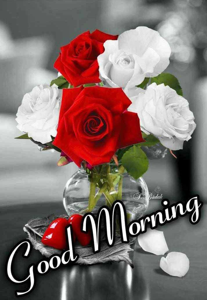 good morning - S . Bidak mu Good Morning 0oa - ShareChat