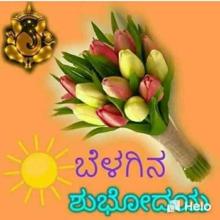 good morning 🙏🙏 - ಬೆಳಗಿನ - ಶುಭೋದಯ - ShareChat