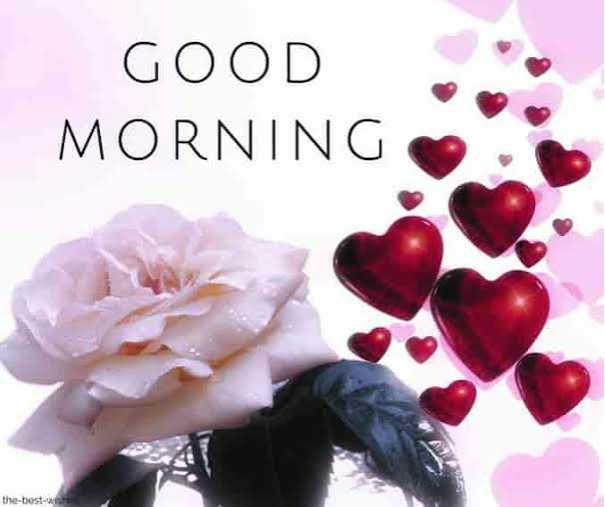 🌷🌷good morning🌷🌷 - GOOD MORNING the - best - ShareChat