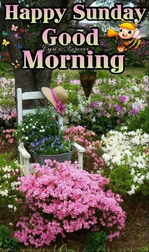 😊💐good morning 😊💝 - Happy Sunday Good ) Morning orever - ShareChat