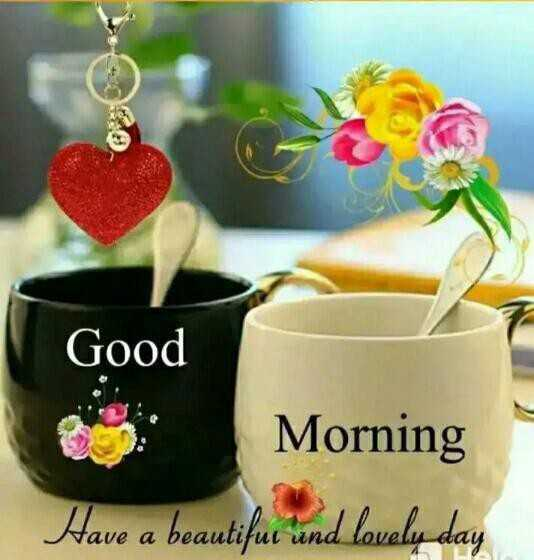 good morning - Good Morning Have a beautifur und lovely day - ShareChat